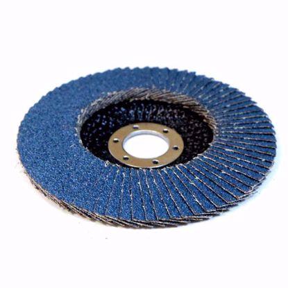 Изображение Лепестковый тарельчатый круг FLD-10 INOX125x22 P60